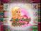 Логотип игры Lucky Lady's Charm Deluxe